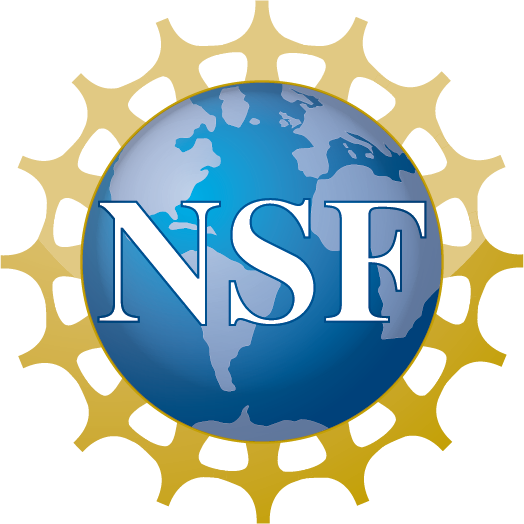 National Scinec Foundation logo